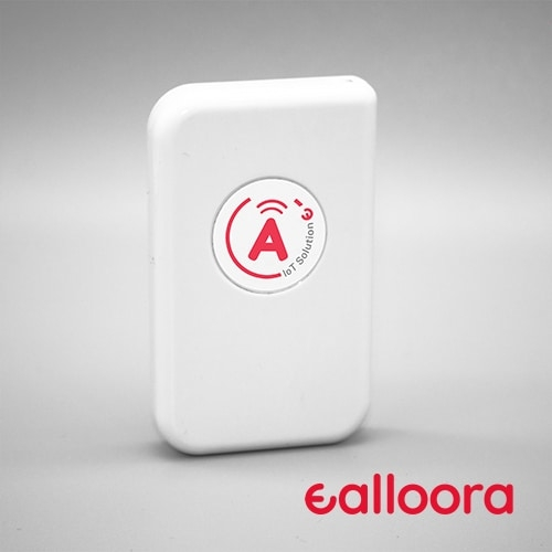 Product Ask Ealloora